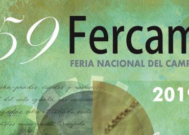 Punotec asistirá a FERCAM 2019