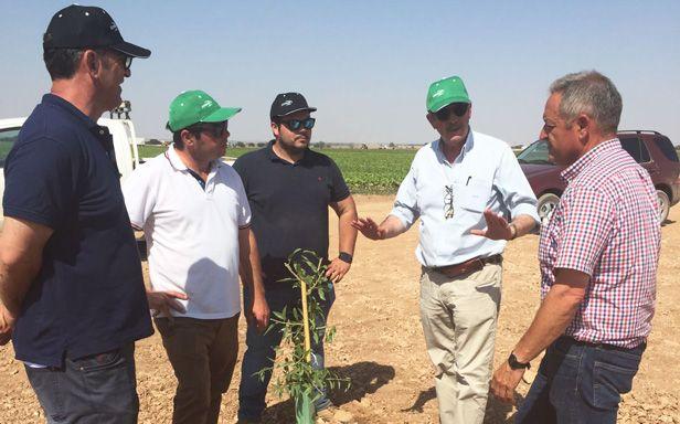 Asesoramiento Técnico Agrícola Ciudad Real