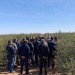 Curso de poda de olivo