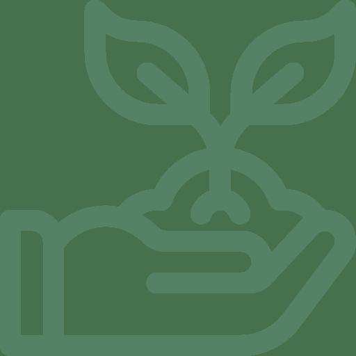 plantaciones-integrales-llave-en-mano.png