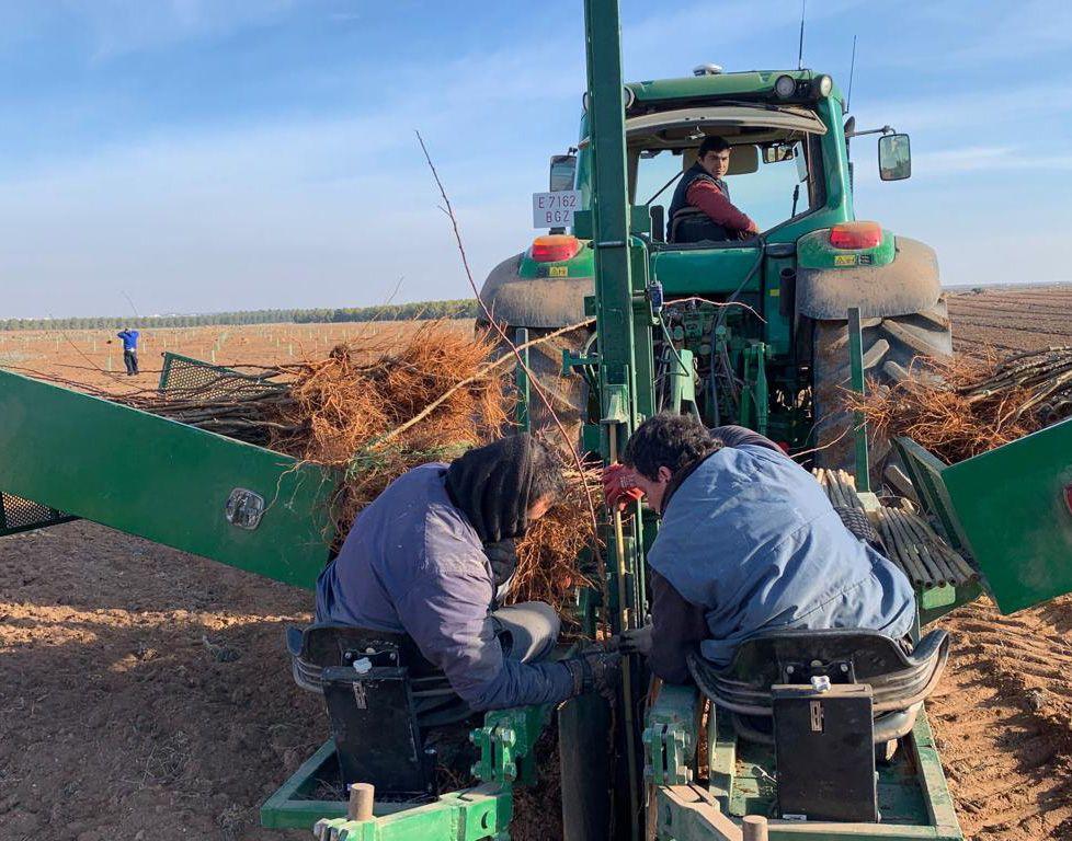 Servicios Agrícolas en Castilla La Mancha